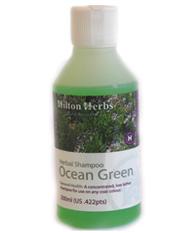 Hilton Herbs Equine General Health -  Ocean Green Shampoo