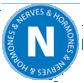Hilton Herbs Equine Nerves & Hormones