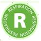 Hilton Herbs Respiration