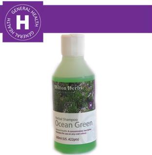 Hilton Herbs Equine General Health Ocean Green Shampoo