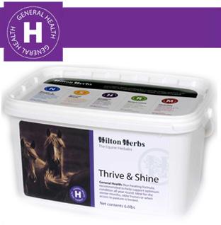 Hilton Herbs Equine General Health - Thrive & Shine Linseed & Fenugreek
