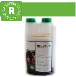 Hilton Herbs Equine Respiration Traditional Herbal Syrup