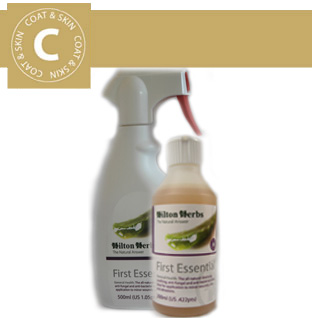 Hilton Herbs Canine Coat & Skin - First Essential