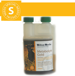 Hilton Herbs Canine Special Needs Metabolyte Gold