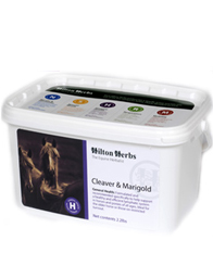 Hilton Herbs Equine General Health - Cleaver & Marigold