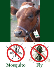 shoo!TAG Bovine - Cow - Insect Control - Fly & Mosquito