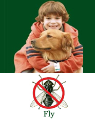 ShooTAG Canine Insect Control - Fly
