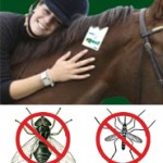 Shoo!TAG Horses – Fly & Mosquito