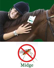 Shoo!TAG Horse Insect Control - Midge