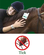 Shoo!TAG Horse Insect Control - Tick
