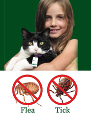 Shoo!TAG Cat  Insect Control - Flea & Tick