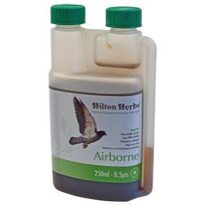 Hilton Herbs Airborne – 0.5 Pints