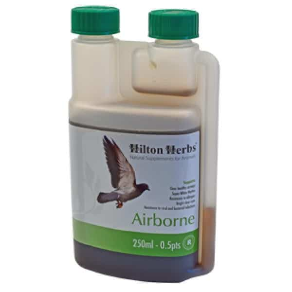 Hilton Herbs AIRBORNE