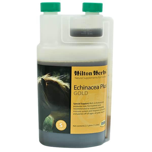 Hilton Herbs ECHINACEA PLUS GOLD