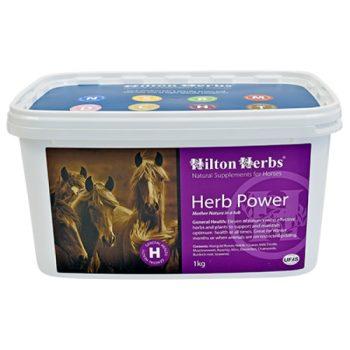 Hilton Herbs Herb Power