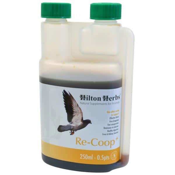 Hiton Herbs RE-COOP PLUS