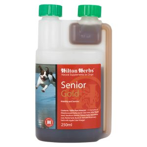 Hilton Herb Canine Senior Dog Gold