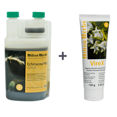 Hilton Herbs Sarcoid Bundle