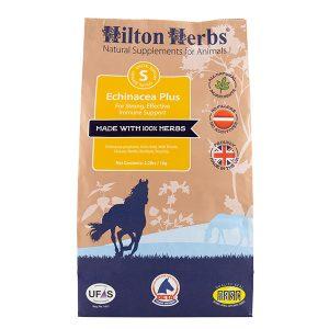 Hilton Herbs Echinacea Plus